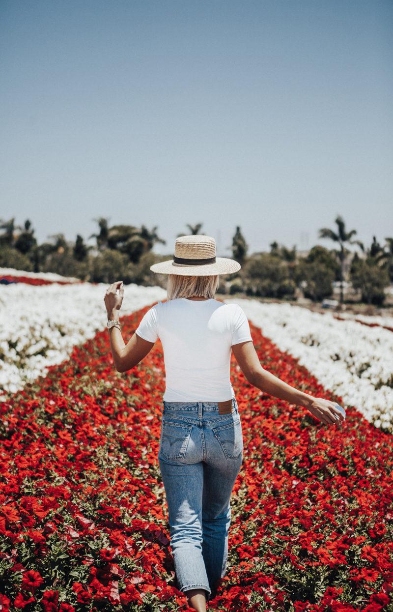flower fields in carlsbad California
